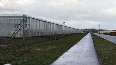 The greenhouse is 488 meters long and 365 meters wide and covers an area of approximately 18 hectares.